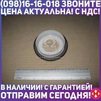 ⭐⭐⭐⭐⭐ Сальник REAR PSA/FORD TU5JP4/DV4TD/F6JA/DV6ATED4 BAPTSLRSX7-CALZATO 85X105X8.8 TFE (пр-во Corteco) 20029117B
