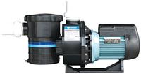 Насос Emaux, серии SB (1,3 кВт,1,8 кВт,2,18 кВт)