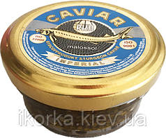 Чорна ікра 100 г (каспійський осетер)