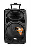 Акустическая портативная колонка комбик Su-Kam BT120A + 2 микрофона