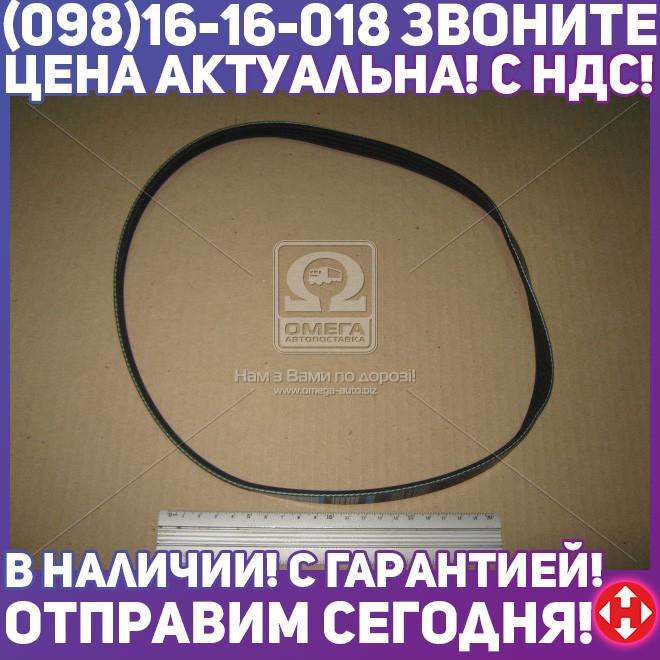 ⭐⭐⭐⭐⭐ Ремень поликлиновый 4PK885 (производство  DONGIL)  4PK885