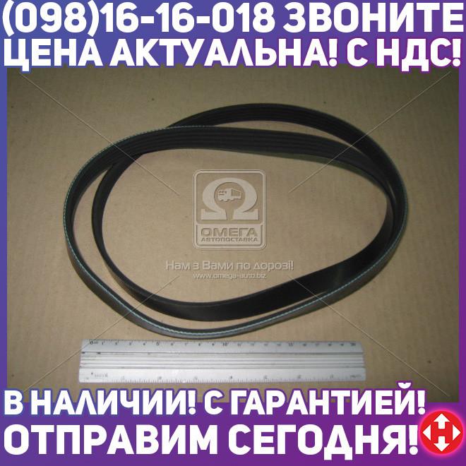 ⭐⭐⭐⭐⭐ Ремень поликлиновый 5PK1390 (производство  DONGIL)  5PK1390