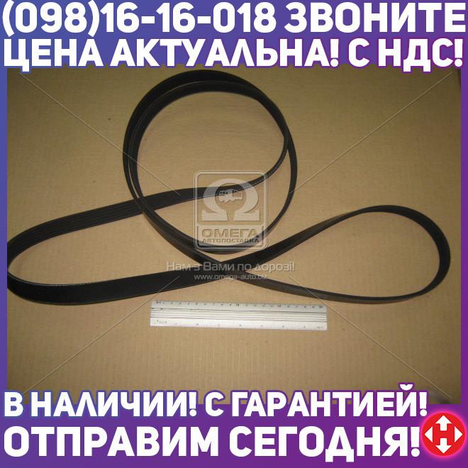 ⭐⭐⭐⭐⭐ Ремень поликлиновый 6PK2584 (производство  DONGIL)  6PK2584