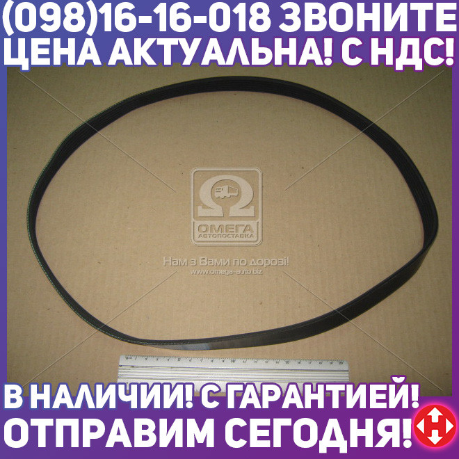 ⭐⭐⭐⭐⭐ Ремень поликлиновый 6PK1120 (производство  DONGIL)  6PK1120