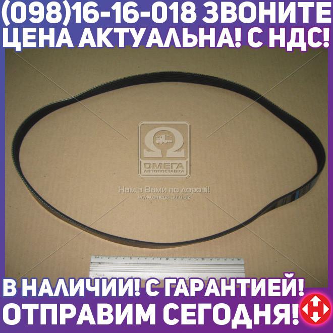 ⭐⭐⭐⭐⭐ Ремень поликлиновый 6PK1185 (производство  DONGIL)  6PK1185