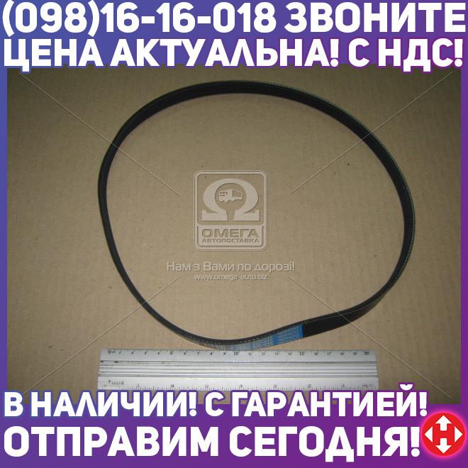 ⭐⭐⭐⭐⭐ Ремень поликлиновый 4PK815 (производство  DONGIL)  4PK815