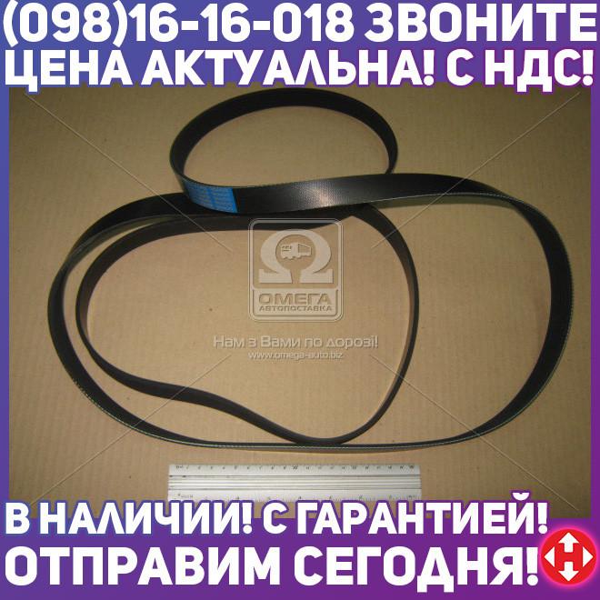 ⭐⭐⭐⭐⭐ Ремень поликлиновый 6PK2590 (производство  DONGIL)  6PK2590