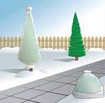 Защита деревьев и кустарников зимой с применением  нетканых материалов Агротекс