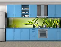 Листья бамбука, Кухонный фартук с фотопечатью, Цветы, зеленый