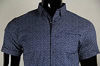 Рубашка мужская ANG 40200/40205 норма и батал