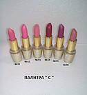 Помада для губ Parisa Cosmetics матовая Velvet Matte L-05, фото 7