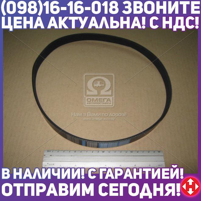 ⭐⭐⭐⭐⭐ Ремень поликлиновый 6PK875 (производство  DONGIL)  6PK875