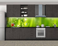 Кухонный фартук Божья коровка роса и трава, виниловая самоклеющаяся пленка, наклейка на кухню, скинали на стену, Зеленый, 600*3000 мм