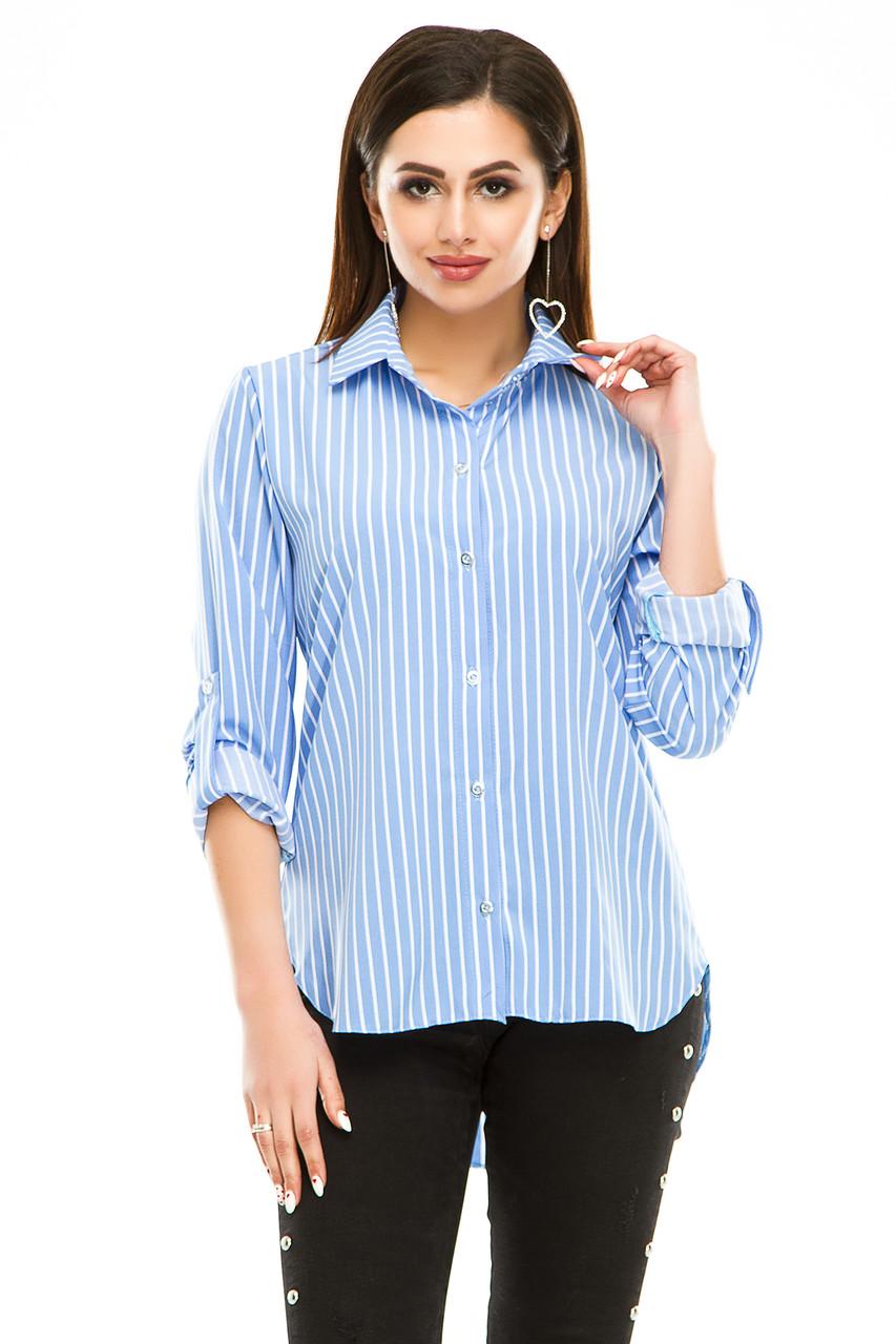 Блузка 294 голубая полоска