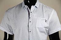 Рубашка мужская ANG 44840/44845 норма и батал