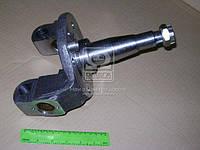⭐⭐⭐⭐⭐ Кулак поворотный левый (пр-во ГАЗ) 3309-3001013