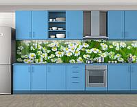 Летние ромашки в траве, Самоклеящаяся стеновая панель для кухни, Цветы, зеленый