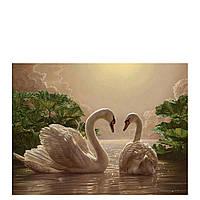 Картина по номерам Роспись на холсте Пара лебедей KH301 40*50 см