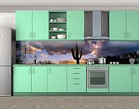 Кактус в пустыне, Фотопечать кухонного фартука на самоклейке, Природа, фиолетовый