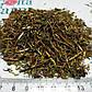 Шикша сибирская трава 50 грамм, фото 2