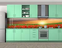 Закат над маковым полем, маки, Самоклеящаяся стеновая панель для кухни, Цветы, красный