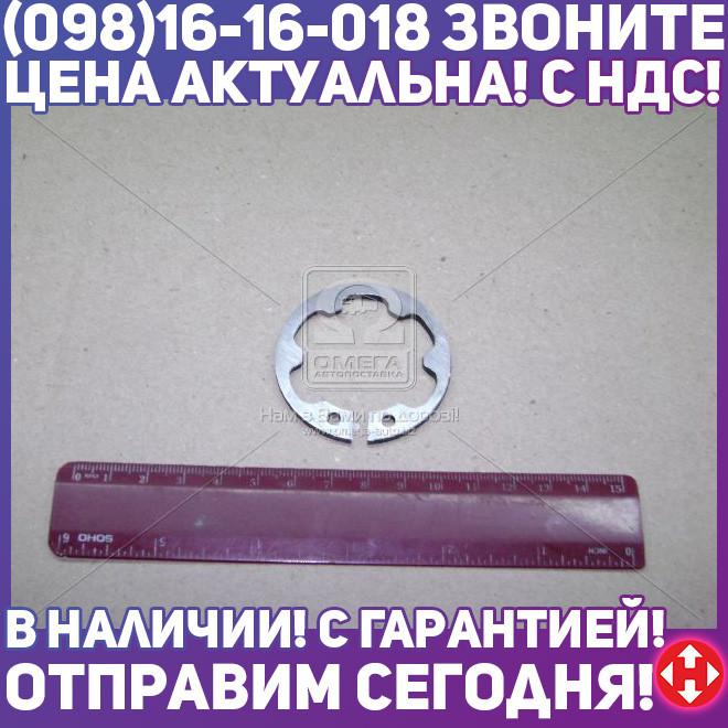 ⭐⭐⭐⭐⭐ Кольцо стопорное ступицы муфты КПП 5 ступенчатая ГАЗ 3110 (производство  ГАЗ)  3105-1701034