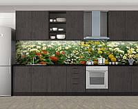 Кусты хризантем, Пленка для кухонного фартука с фотопечатью, Цветы, зеленый