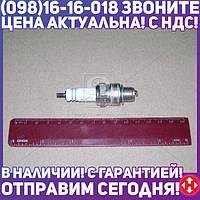 ⭐⭐⭐⭐⭐ Свеча зажигания APS А-11 ГАЗ, ЗИЛ индивидуальная упаковка (производство  Энгельс)  А-11