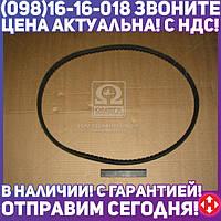 ⭐⭐⭐⭐⭐ Ремень 21х14х1650 зубчатый ЗИЛ 130 (производство  ЯРТ)  21х14х1650 зуб