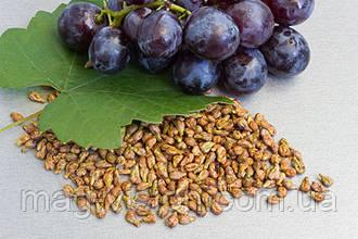 8 полезных свойств виноградных косточек
