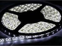 Лента светодиодная SMD 3528 / 60 LED на метр/ IP65 влагозащищеная / 6Lm/led / 4.8W / 12V /холодно белый