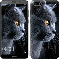 Чехол EndorPhone для Huawei Y5 2018 Красивый кот (3038m-1500)