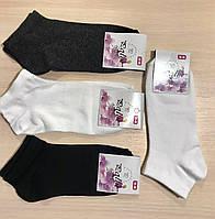 Носки демисезонные хлопок укороченные POLO Турция размер 36-40 ассорти