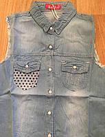 Джинсовые рубашки для девочек оптом, S&D,134-164 рр.,  Арт. KK-742, фото 2