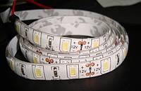 Лента светодиодная защищённая белая SMD 3014 60SMD(3014)/m 4,8W/m 12V 1m*12*0.22mm IP65 Premium (двойн. силик)