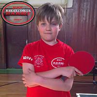 Обучение настольному теннису в Европе, фото 1