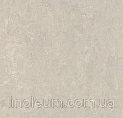 3136 Marmoleum Real - Натуральний лінолеум (2,0 мм)