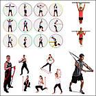 Резиновая петля XS (5-22 кг) • резина для подтягивания • резина для спорта • Zelart •, фото 2