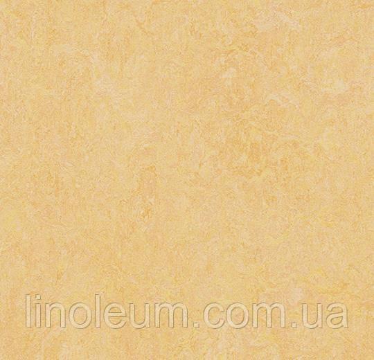 3846 Marmoleum Fresco - Натуральний лінолеум (2,0 мм)
