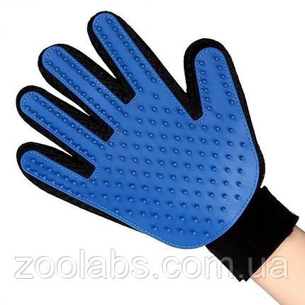 Перчатка для вычесывания шерсти питомца, фото 2