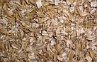 Одно и двухвальцевые плющилки зерна, фото 8