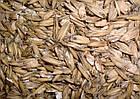 Одно и двухвальцевые плющилки зерна, фото 9