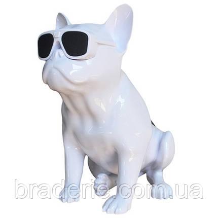 Портативная аккумуляторная колонка Aerobull BIG DOG S4 Бульдог, фото 2
