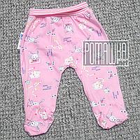 Тонкие ползунки штанишки р 74 5 6 7 месяцев детские с широкой резинкой для малышей ткань КУЛИР 3420 Розовый