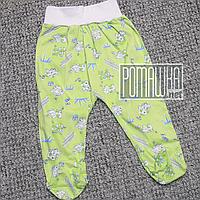 Тонкие ползунки штанишки р 86 9 11 12 месяцев детские с широкой резинкой для малышей ткань КУЛИР 3420 Зеленый