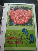 Лікарські рослини. Навчальний гербарій