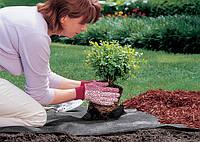 Как избавиться от сорняков?