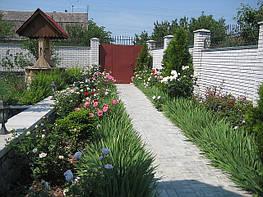 Основные принципы оформления сада