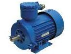 Электродвигатели асинхронные ВР, АИМ, АИММ, ВАО с короткозамкнутым ротором IP54. IP55.