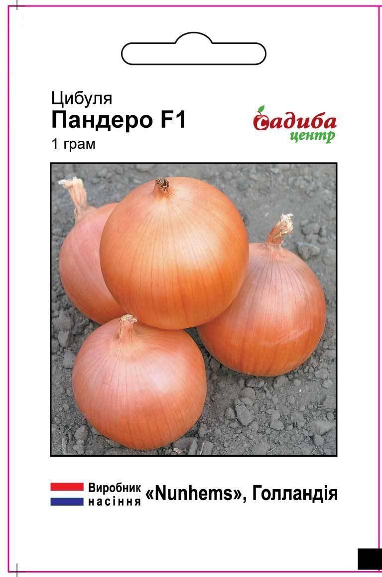 Новый гибрид лука для длительного хранения Пандеро F1, пакетированные семена Nunhems 1 грамм (Садиба Центр)